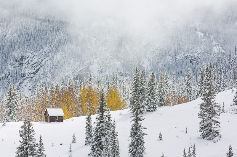 Snow storm, Colorado near Molas Pass