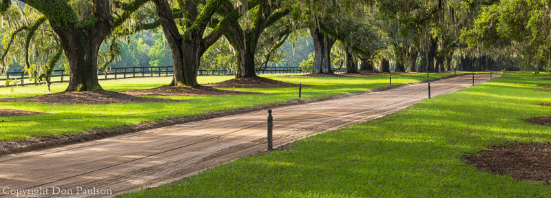Boone Hall Plantation, South Carolina, high resolution panorama