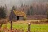 Washington; Discovery Bay; Barn in Rain