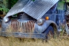 Old truck, Peterson\'s Farm, Silverdale, Washington