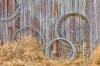 Coils of Wire on wall, Historic Petersen Farm, Silverdale Washington
