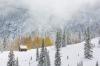 Snow storm, Colorado near Molas Pass
