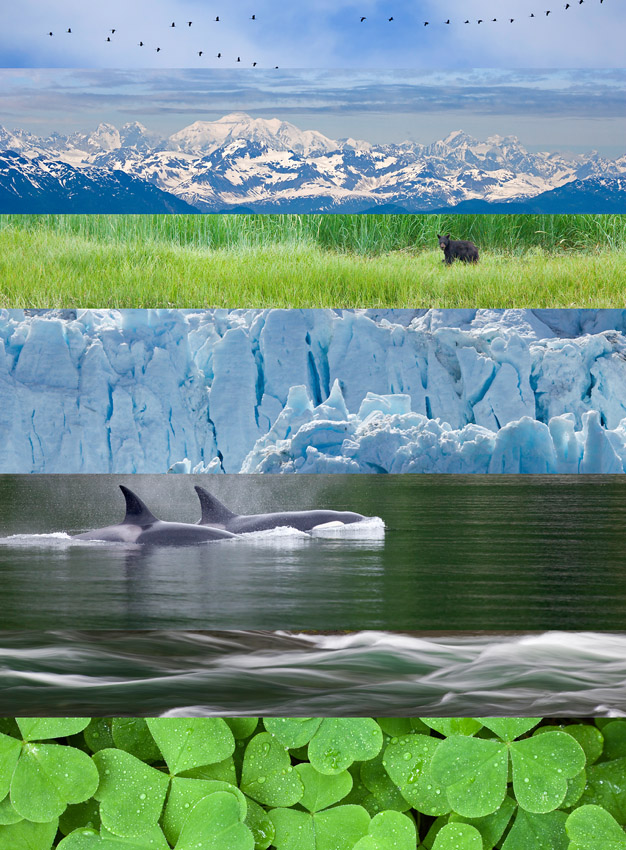 South East Alaska collage