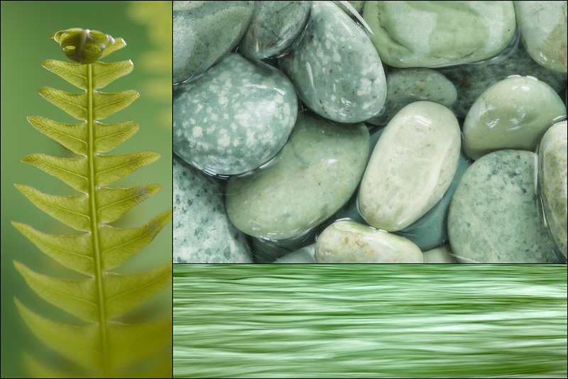Rocks, Water, Fern collage