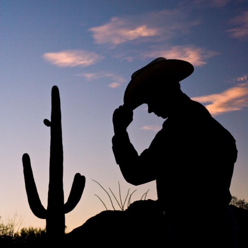 Arizona; Tucson; Saguaro; cowboy