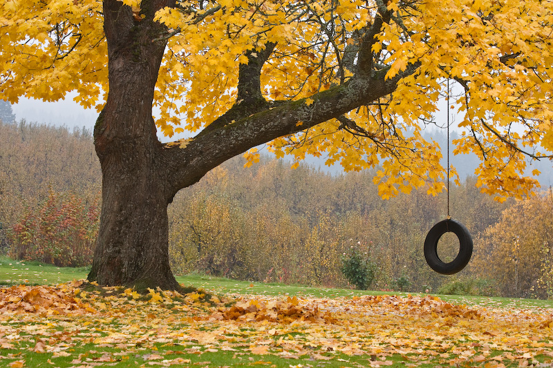 Oregon; Hood River; Tire swing