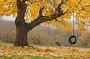 Oregon; Hood River; Tire swing