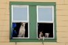 Alaska; Ketchikan; dogs in window