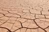 Dried up and cracked river bottom mud, near Gila Bend, Arizona