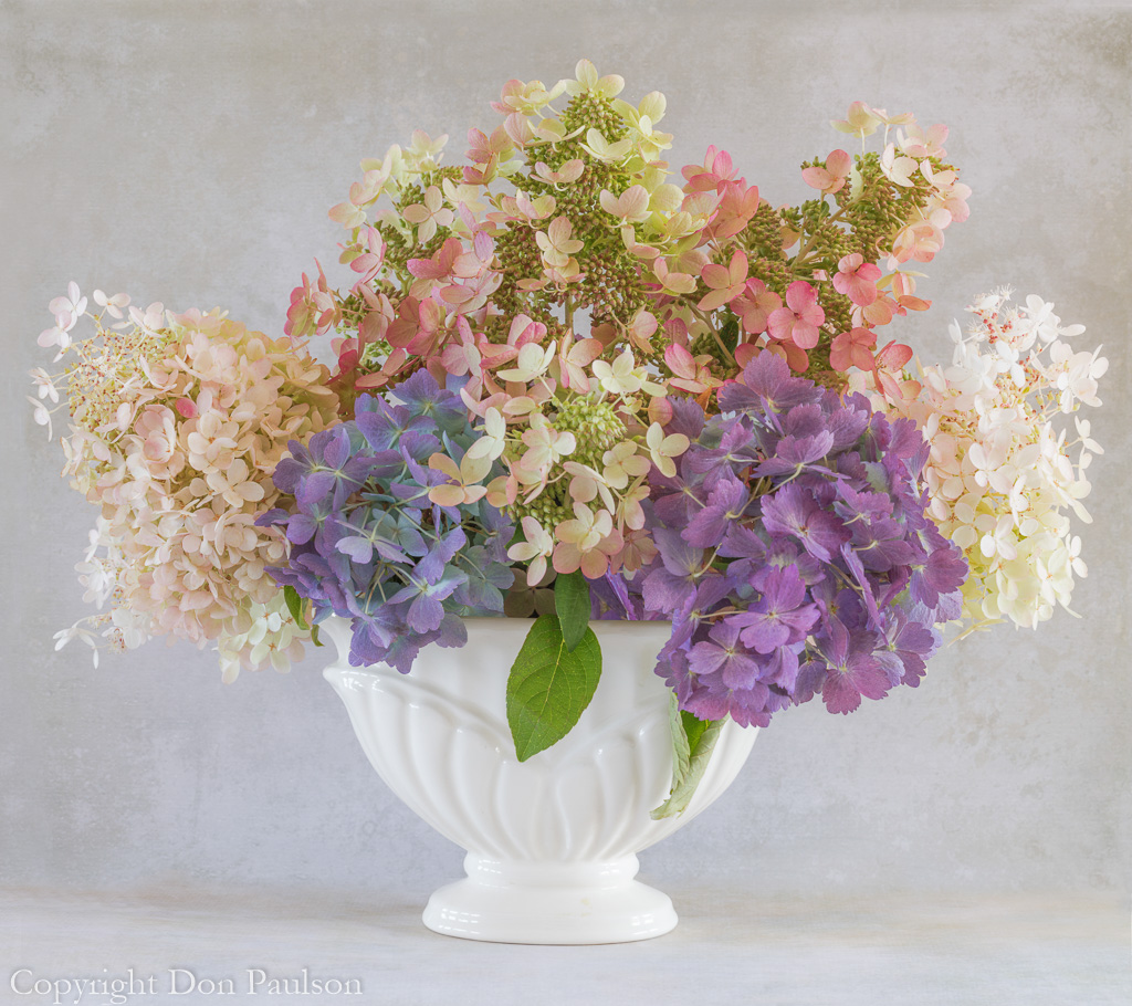 Hydrangea Flower Arrangement