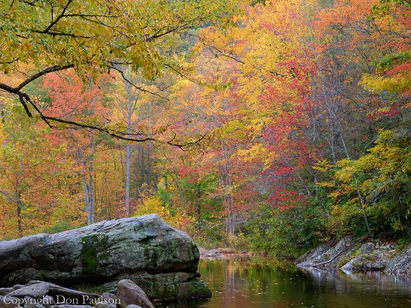 West Fork Pigeon River, North Carolina