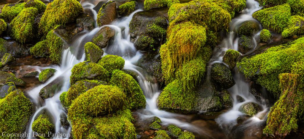 Cedar Creek detail #6 (high resolution panorama)