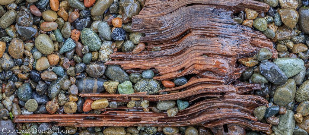 Driftwood and Beach Rocks