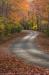 Scenic Drive, Falls Creek Falls State Park, Tennessee