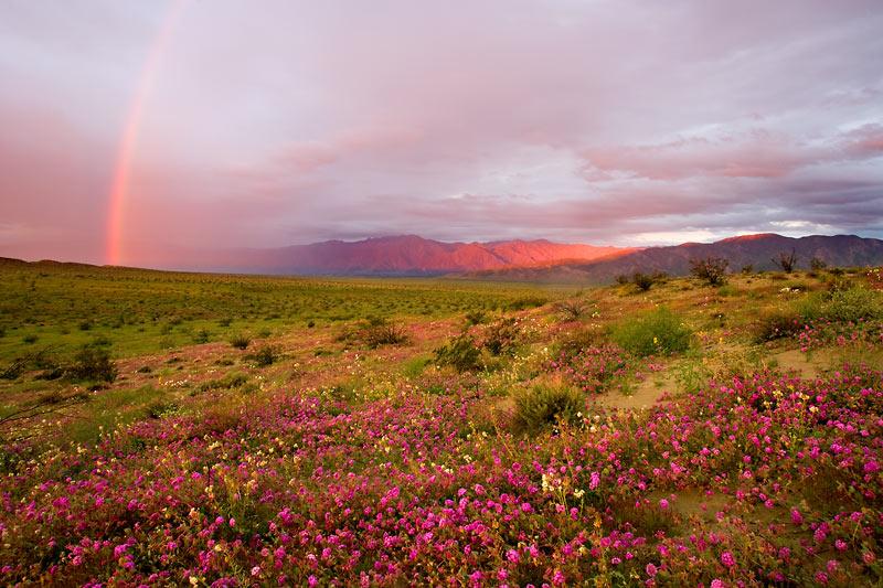 Rainbow over Anza Borrego State Park, California