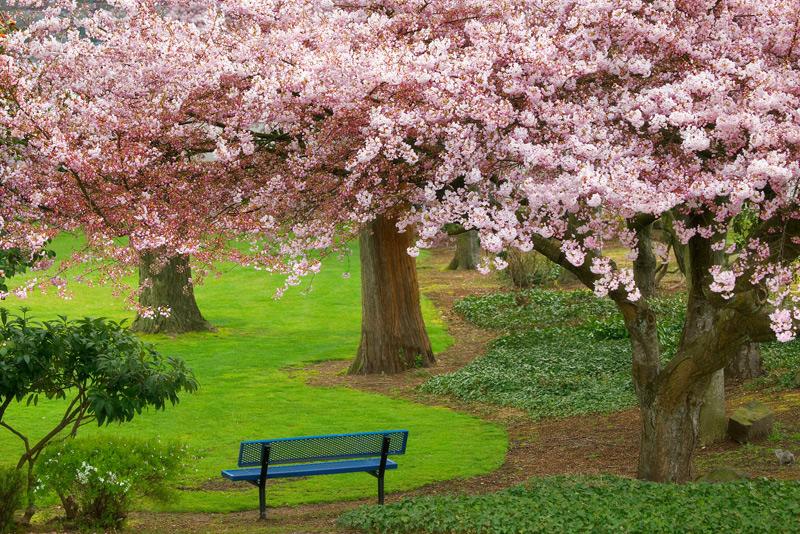 Evergreen Park, Bremerton, Washington
