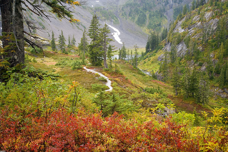 Washington; Mount Baker Wilderness; Heather Meadows; Bagley Lakes
