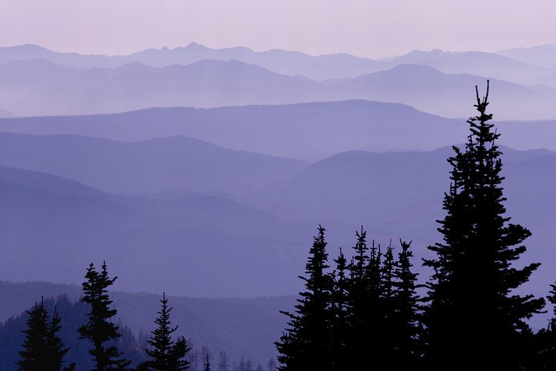 Layered Hills, Washington; Mount Rainier National Park