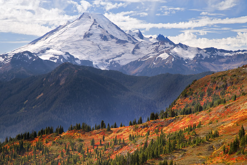 Mount Baker from Yellow Aster Butte, Casade Mountains, Washington