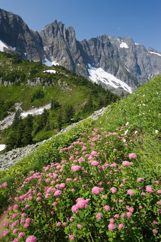 Washington; North Cascades National Park; Cascade Pass