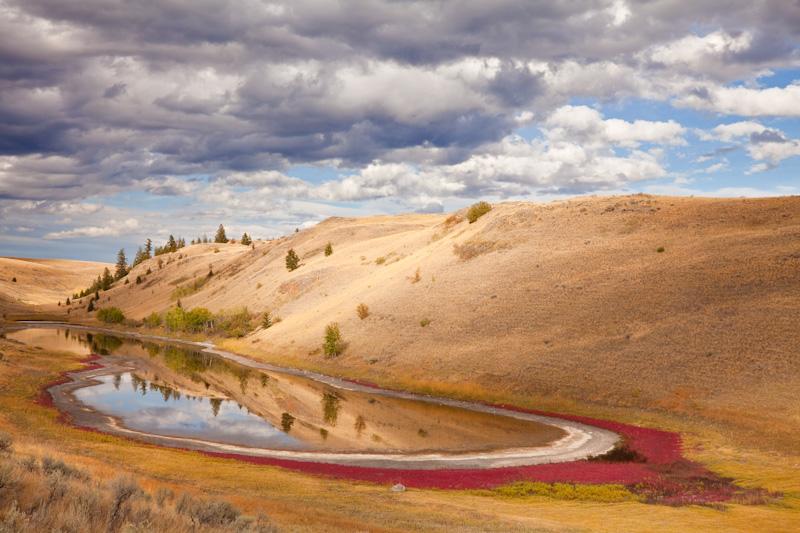 Canada; British Columbia; Lac Du Bois Grasslands Park