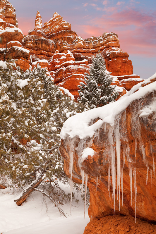Ice and Snow, Red Canyon State Park, Utah