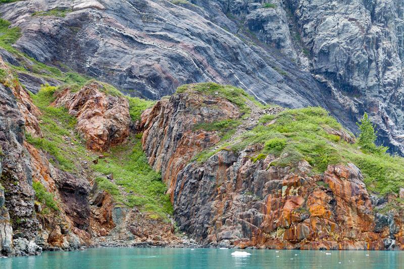 Rocky shore near Reid Glacier, Glacier Bay National Park