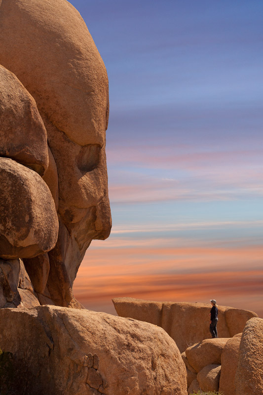 Facing Face Rock, Joshua Tree National Parik