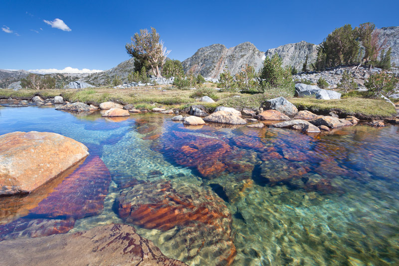 Stream above Garnet Lake, Ansel Adams Wilderness, Inyo National Forest, California