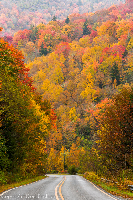Fall color, NC 215, North Carolina