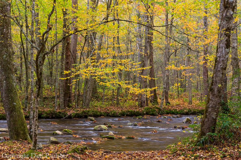 Oconaluftee River Trail, Great Smoky Mountains, North Carolina
