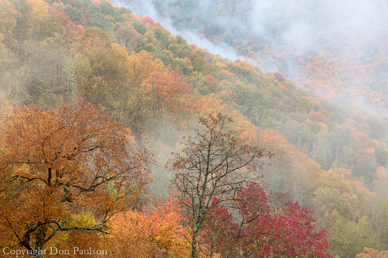 View from the Newfound Gap Road, Great Smoky Mountains, North Carolina
