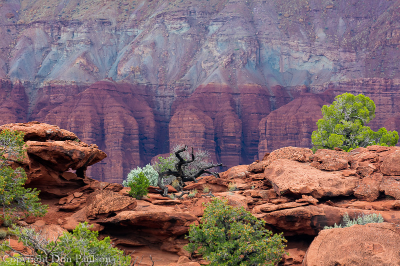 View from Sunset Point, Utah, Capitol Reef National Park
