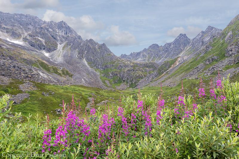 Alaska, Talkeetna Mountains, Hatcher Pass area, Archangel Road