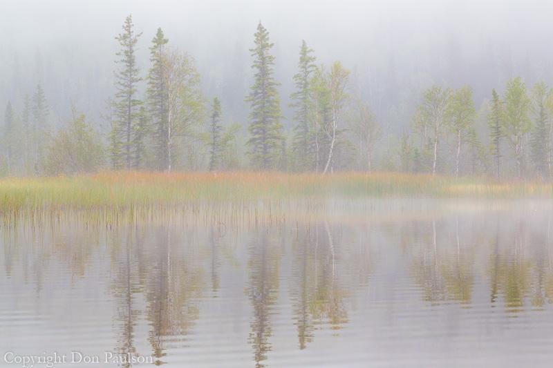 Alaska, Little Lost Lake north of Delta Junction