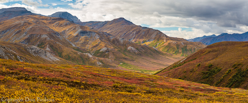 Fall color in the Brooks Range - Brooks Range