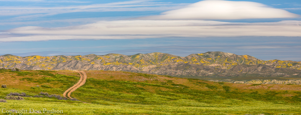 California, Carrizo Plain National Monument - High resolution panorama (11636 px by 4338 px)