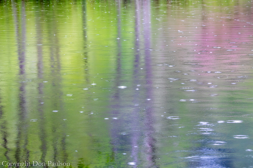Reflections of a Rainy Day #2