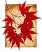 Japanese Maple Leaves-2