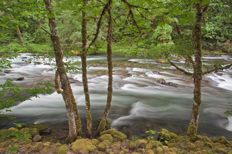 Oregon; Clackamas River