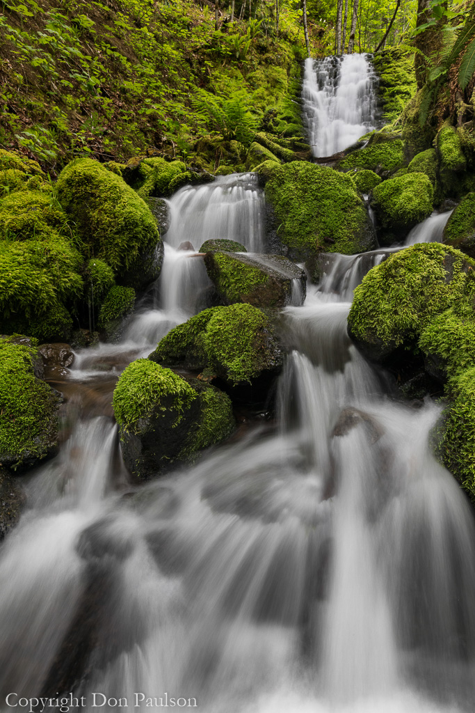 Waterfall - Gifford Pinchot National Forest