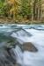 North Fork Skokomish River #2317