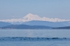 Mount Baker from the San Juan Islands