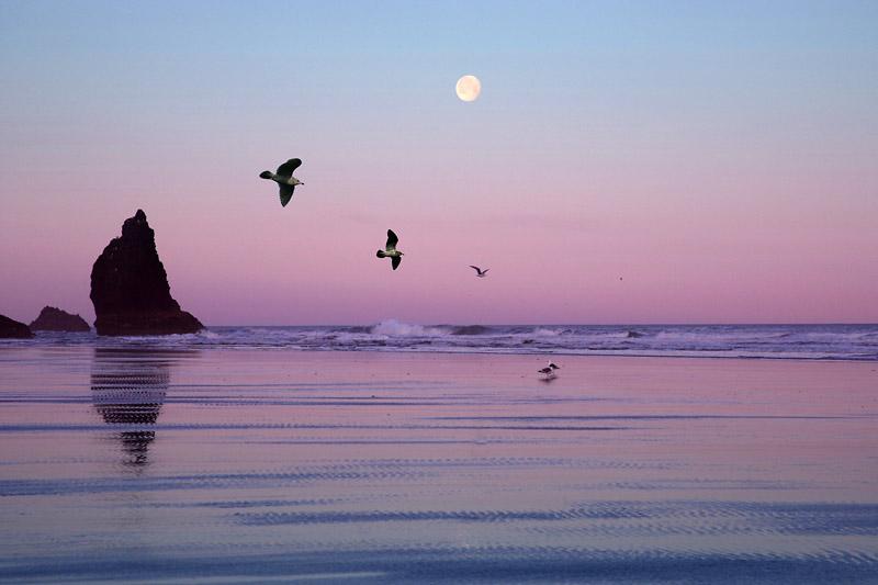 Sunrise, Canon Beach, Oregon