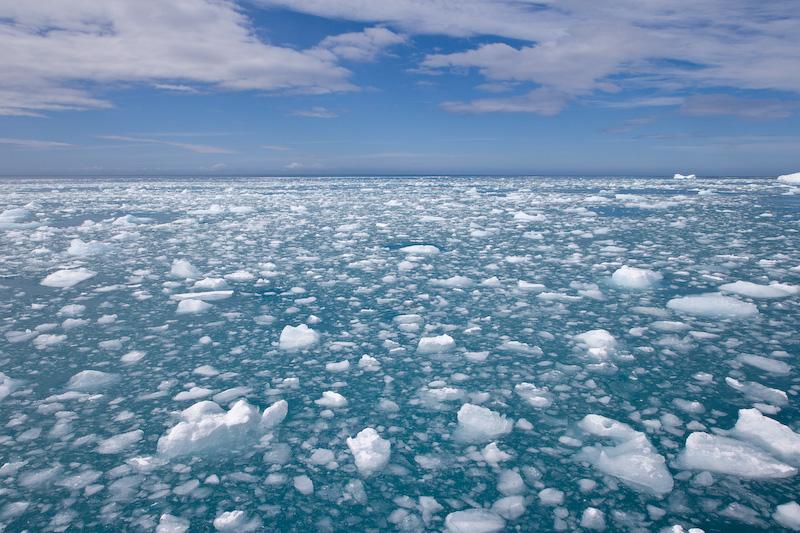 UK; South Georgia Island; Sea Ice