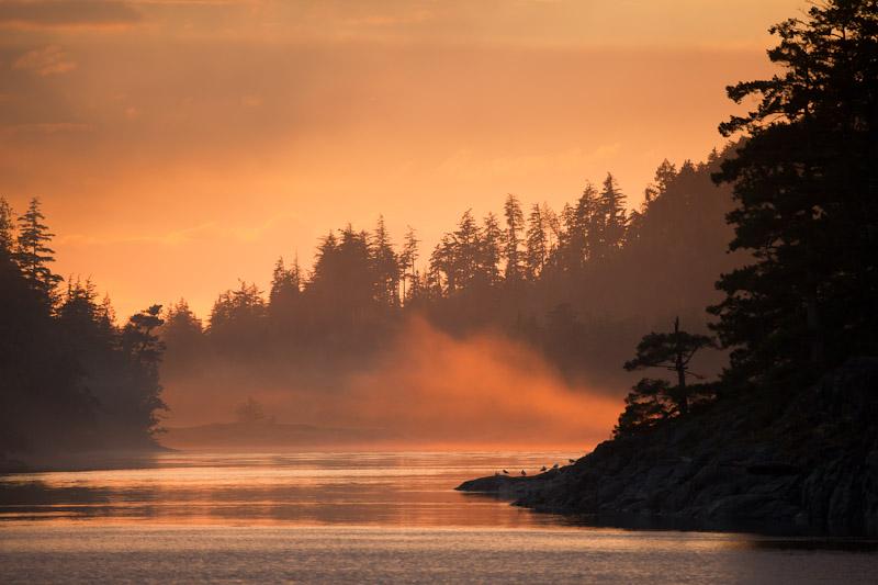 Glowing Fog; British Columbia; Broughton Islands; Village Island