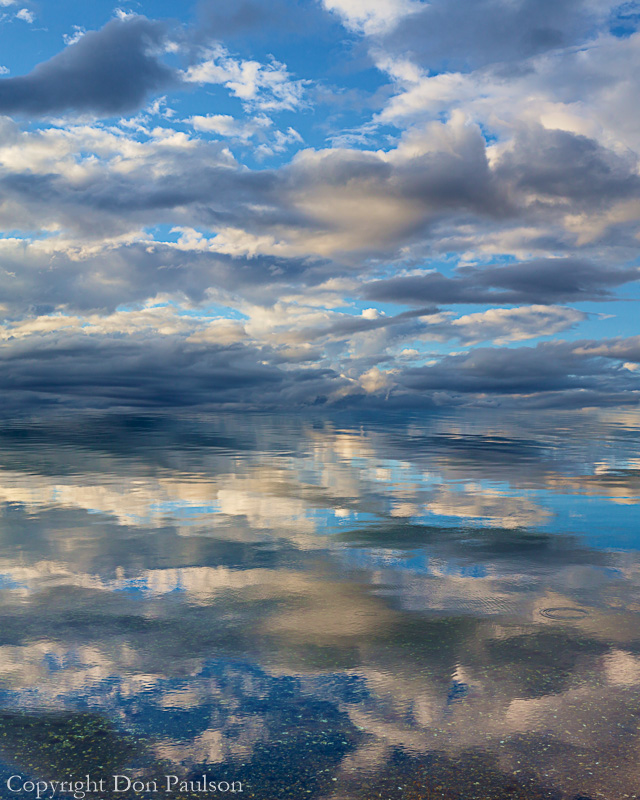 Mirrored reflection, Puget Sound, Washington. High resolution, two image composite, 8:10 aspect ratio.