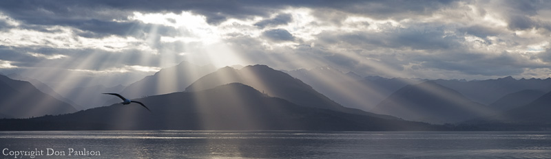 God rays over the Olympic Mountains and Hood Canal, from near Seabeck, Washington, high resolution multi-image composite