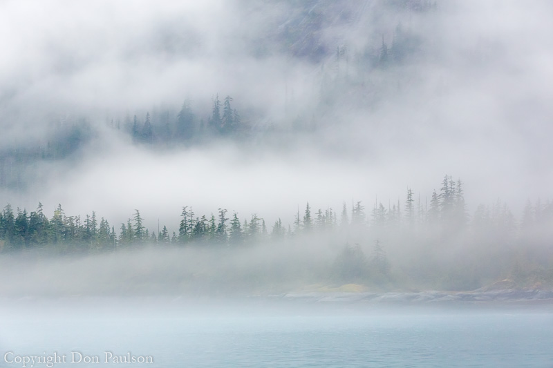 Foggy morning at Fords Terror, Endicott Arm, SE Alaska