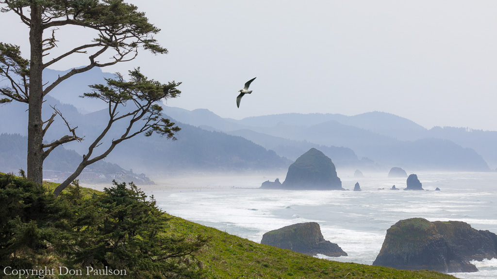 Oregon Coast and Haystack Rock from Ecola State Park